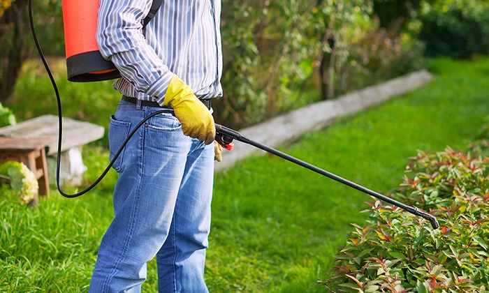 Agriculture Facilities Pest Control Services